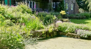 A view of the pond at Pack Horse Stables holiday home